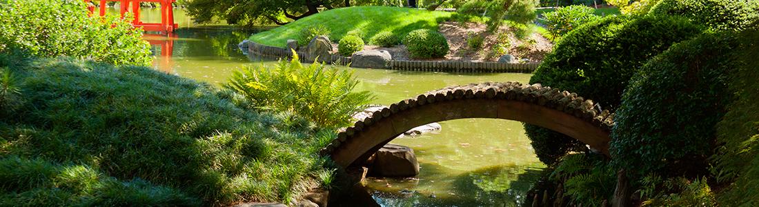 Service d'élagage et d'entretien de jardins