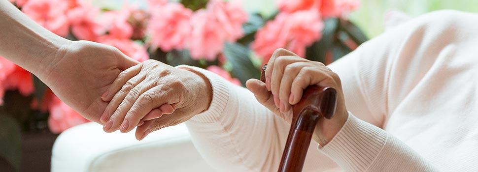 Service à la personne et aide à domicile, Seniors Argenteuil
