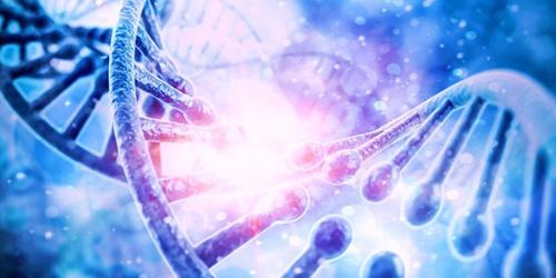 Mémoires cellulaires de l'ADN –  Hervé Bijaoui thérapeute holistique à Paris