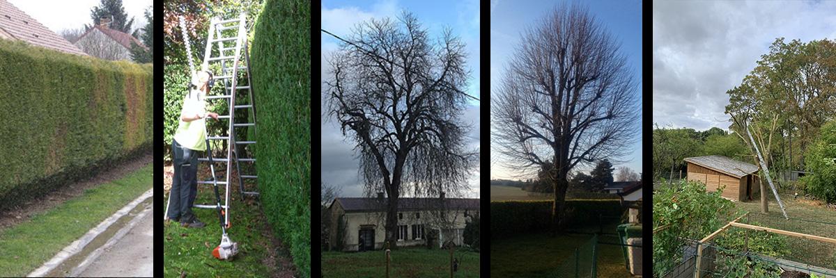 Espaces verts – Élagueur-grimpeur dans l'Eure-et-Loir