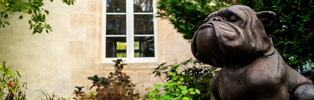 Découvrir Bordeaux et la Gironde — Chambre d'hôtes à Floirac