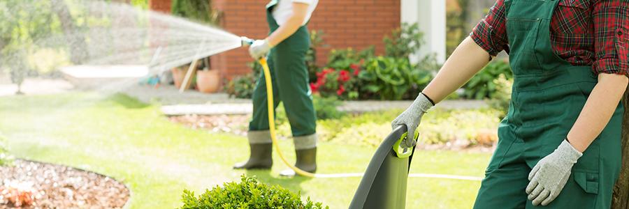 L'entretien et le rafraîchissement du jardin