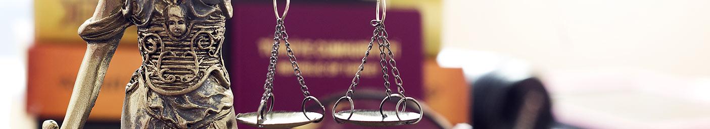 avocat des droits des étrangers
