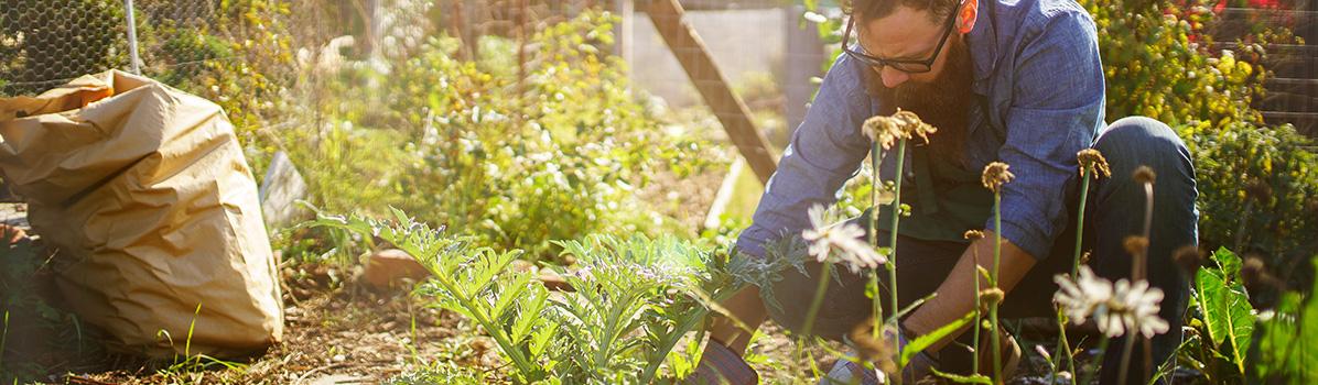 Jardinage et bricolage à Évry – Services à la personne à domicile
