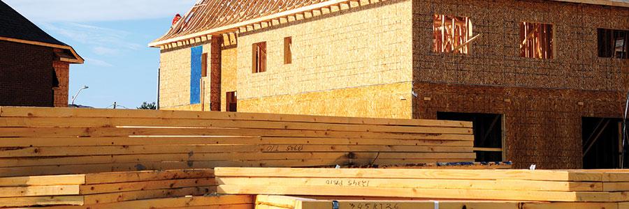 La maison en bois, la solution économique et écologique