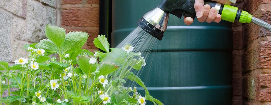 Les avantages du récupérateur d'eau de pluie