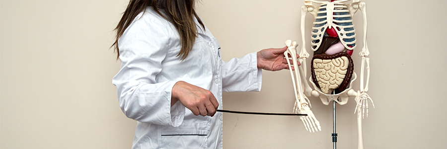 Cabinet de posturologie-orthopédie