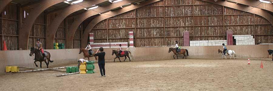 Club d'équitation à Aubry-en-Exmes – Cours et galops
