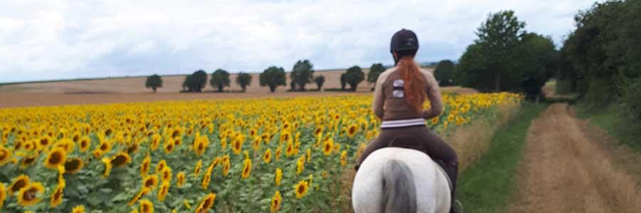 L'initiation à l'équitation
