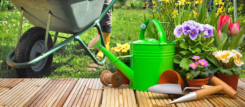Jardinage à domicile à Béthune (Pas-de-Calais)