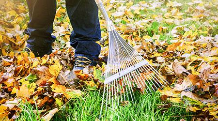 Les aides pour le jardinage à domicile