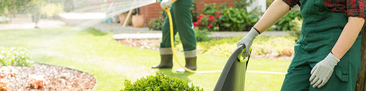 L'entretien du jardin en période hivernale