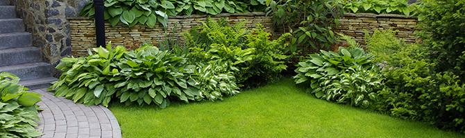 Conception de jardin-Paysagiste