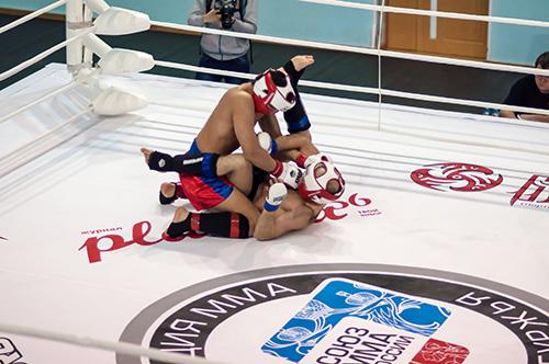 Sport de Combat   Grappling