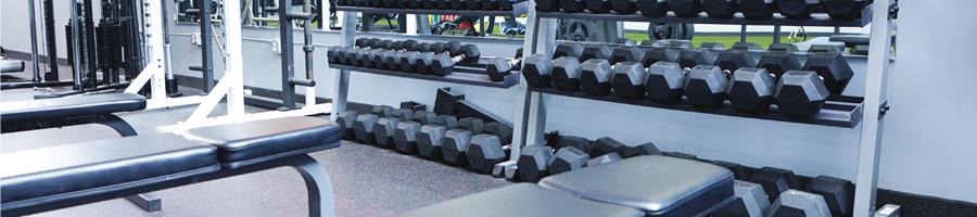 Les équipements de musculation