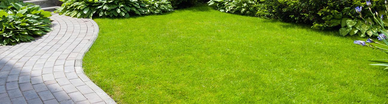 Terrasses et jardinières