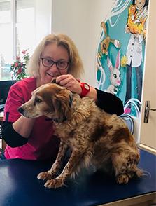 Les assistantes vétérinaires