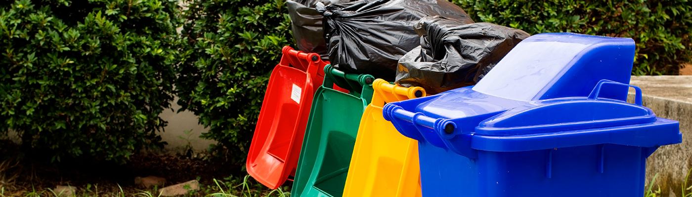 Le nettoyage des poubelles