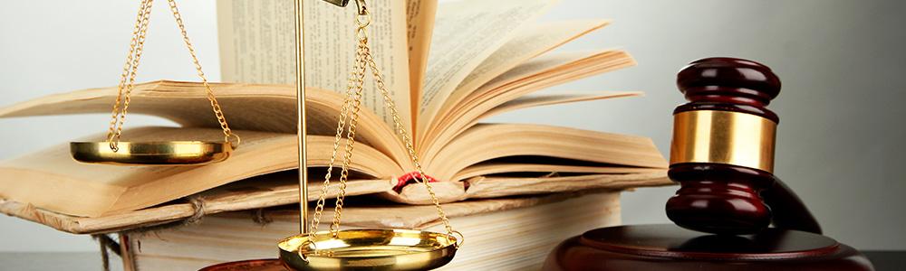 L'enjeu d'une traduction juridique