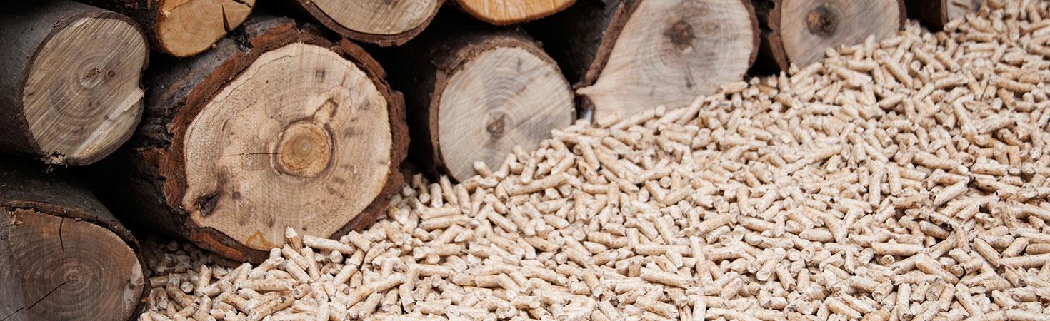 Les critères pour bien choisir son granulé de bois