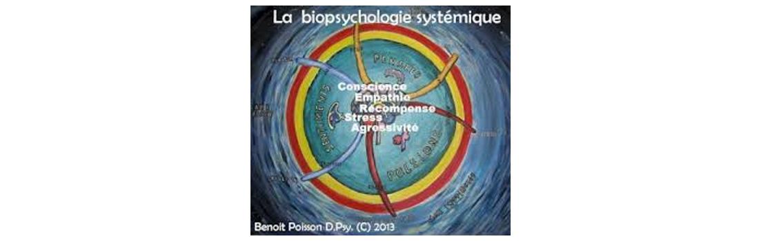 Thérapie systémique biopsychologique de poisson